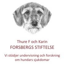 forsbergsstiftelse.se